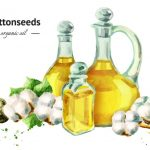 11 Impressive Benefits And Uses Of Cottonseed Oil