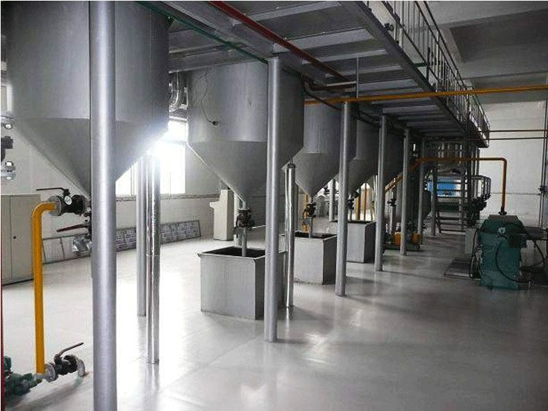 edible oil refinery project