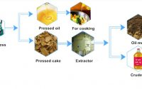 sunflower seed pre-press and meal extraction process