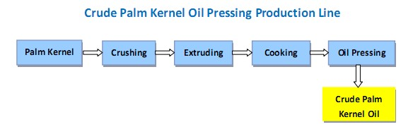 Process flow chart of palm kernel oil pressing machine