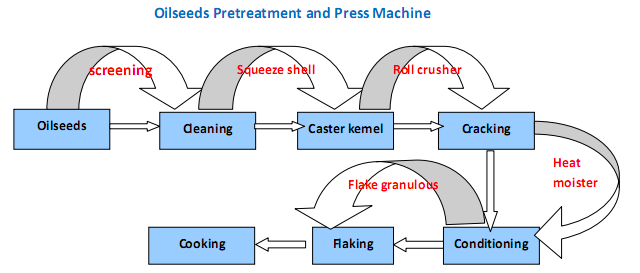 Process Flow Chart of Oil Seeds Pretreatment and Pressing