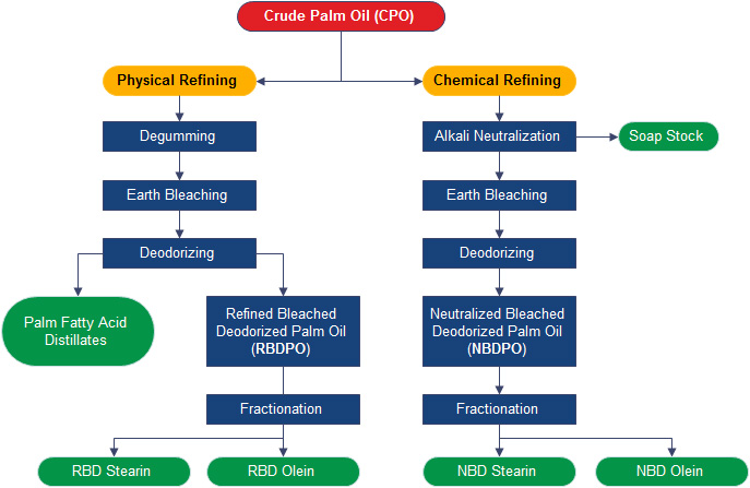 crude palm oil refinery process