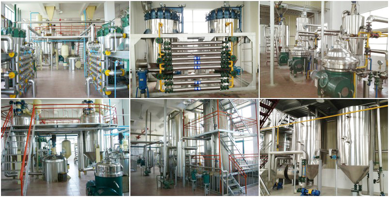 large edible oil refinery plant